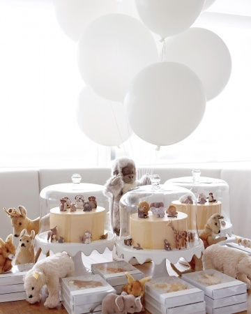 Baby shower animal theme ideas
