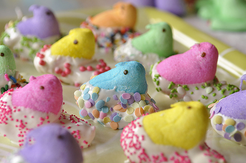 Easter peeps dipped in chocolate