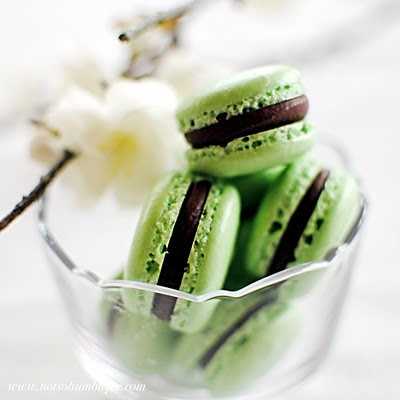 grasshopper mint macaroon