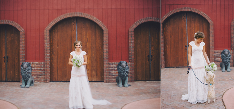 barn wedding, bride shot, dog at wedding