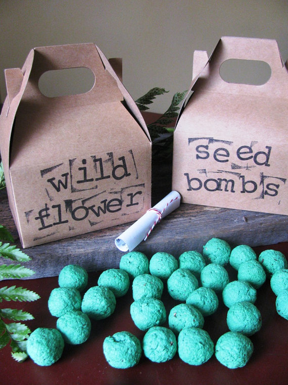 Seed bomb gifts for Earth Day-B. Lovely Events