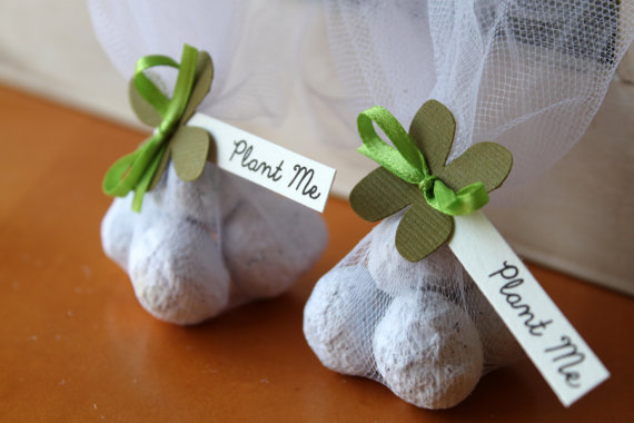 Eco Friendly plantable paper bombs for Earth Day- B. Lovely Events
