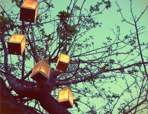 Photo lanterns at wedding