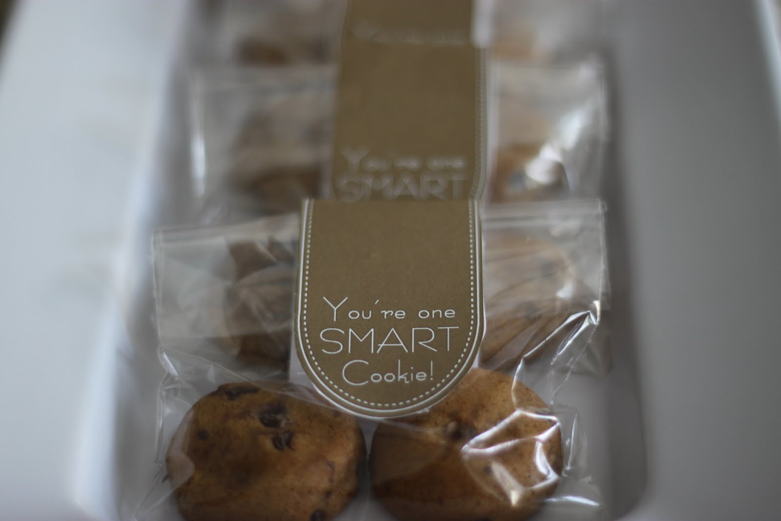 One Smart Cookie Party Favors