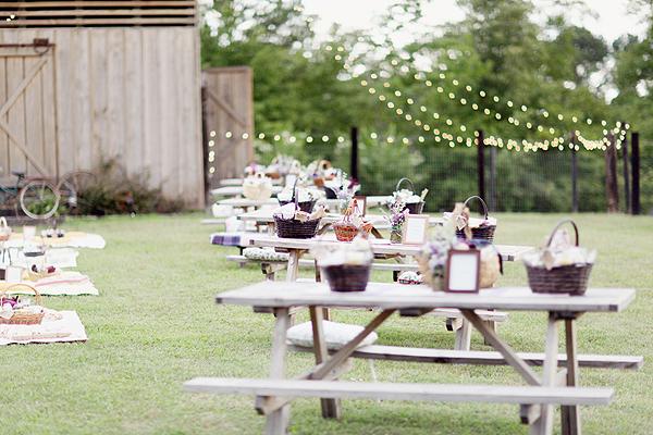 wedding picnic reception