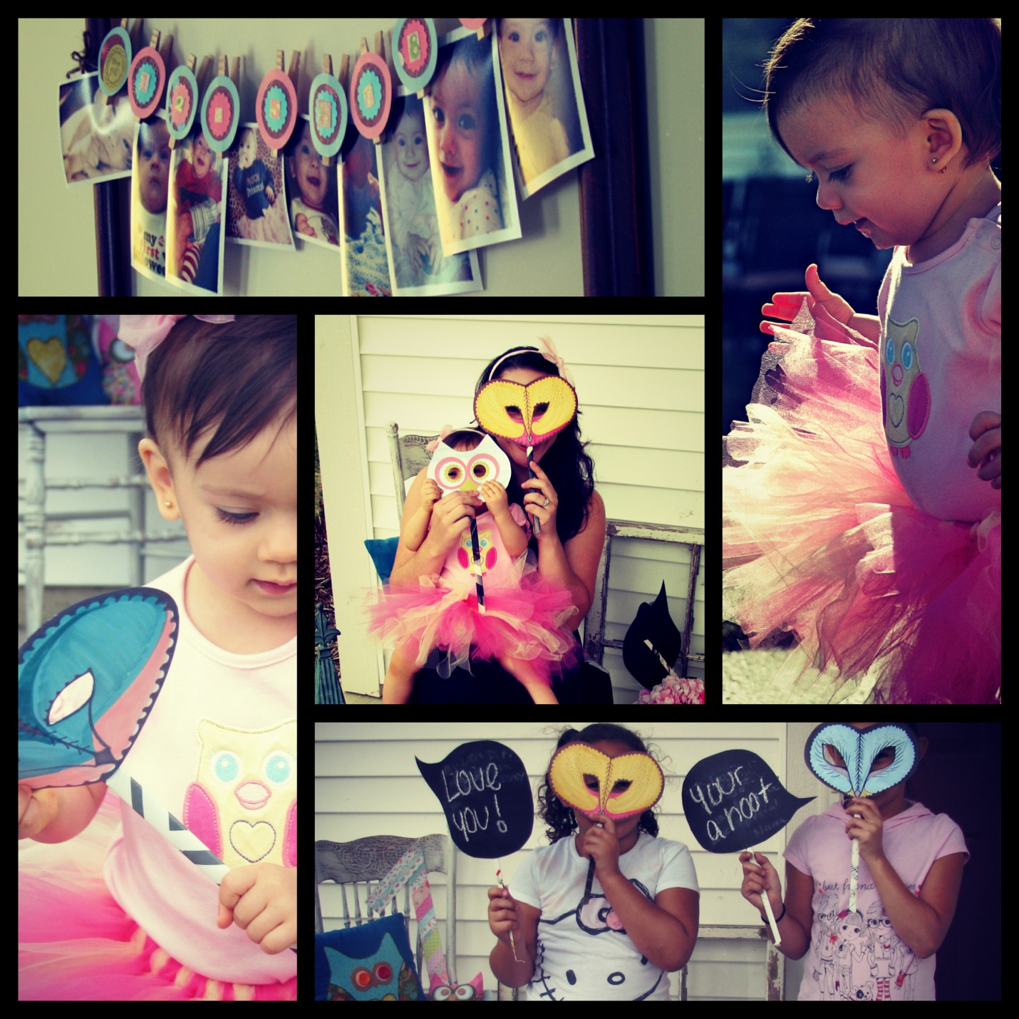 1st birthday owl themed girls birthday party